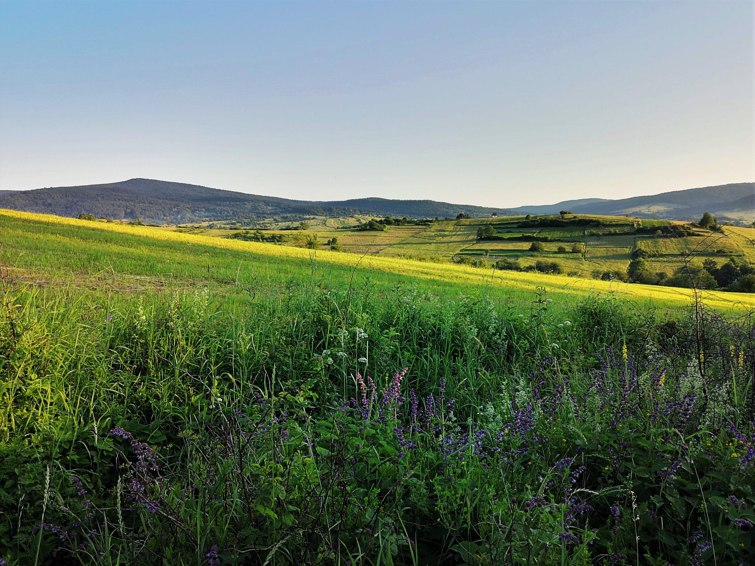 Jaśliski-Park-Krajobrazowy-